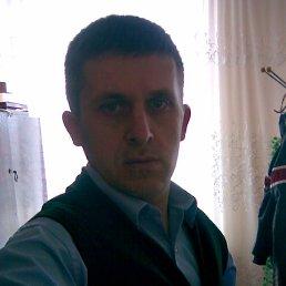 Анрюша, 37 лет, Камень-Каширский