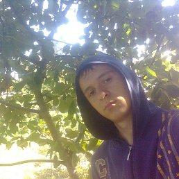 Дима, 26 лет, Веселое