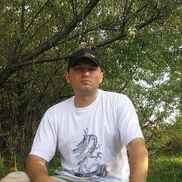 Вадим Тарушкин, 39 лет, Сергиев Посад