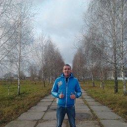 Саша, 26 лет, Переяслав-Хмельницкий