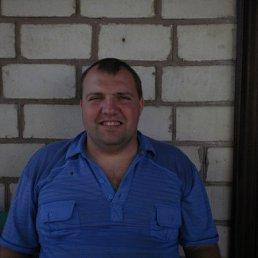 Виталий, 35 лет, Кобеляки