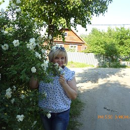 Елена, 54 года, Кольчугино