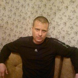 Серёга, 33 года, Калуга