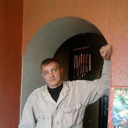 владимир, 44 года, Волжский