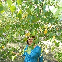 татьяна, 41 год, Макеевка