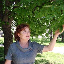 Зинаида, 60 лет, Шпола