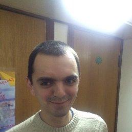 Антон, 26 лет, Ромны