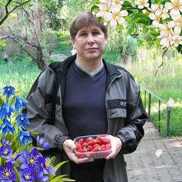 Александр, 58 лет, Донецк