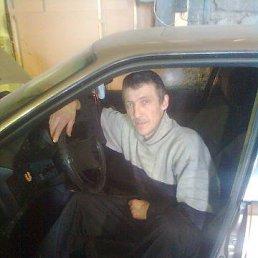 Юрий, 53 года, Сокол