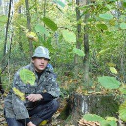 Андрей, 43 года, Белополье