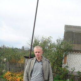 Николай, 37 лет, Брусилов