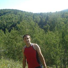 Артур Некипелов, 30 лет, Новосибирск