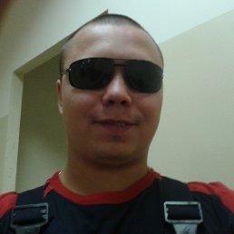 александр, 33 года, Нестерово