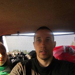 саша, 36 лет, Койгородок