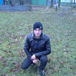 Паша, 28 лет, Олевск