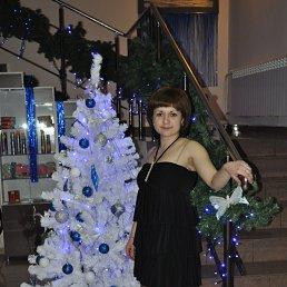 Светлана, 35 лет, Озеры