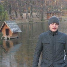 Вадик, 30 лет, Малин