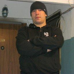 Владимир, 36 лет, Десногорск