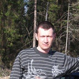 Игорь, 51 год, Малая Вишера
