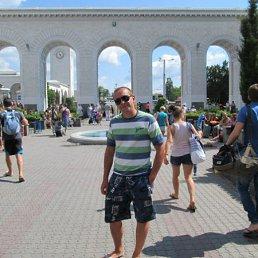 Виктор, 39 лет, Виньковцы