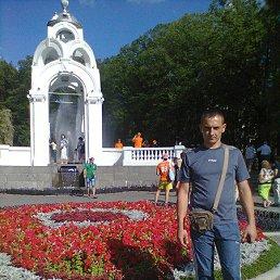 Сергей, 40 лет, Барвенково