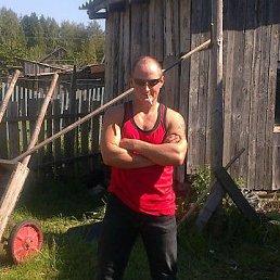 Федя, 41 год, Сандово