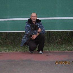 Саша, 47 лет, Буча