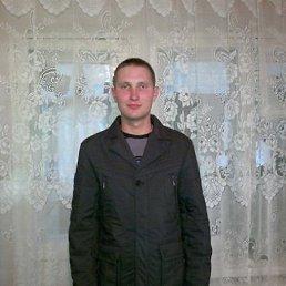 Сергей, 28 лет, Новоульяновск