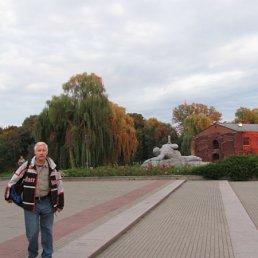 Володя, 60 лет, Краснознаменск