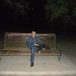 Николай, 25 лет, Нижние Серогозы