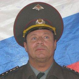 Максим Кононов, 37 лет, Санкт-Петербург