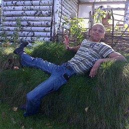 San, 36 лет, Светловодск