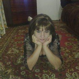 Наташа, 51 год, Ставрополь