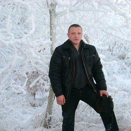 Павел, 36 лет, Шигоны