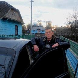 Зиновий, 38 лет, Радехов
