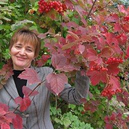 Фото Елена, Чигирин, 57 лет - добавлено 10 января 2012