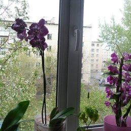 Фото Павел, Чебаркуль, 38 лет - добавлено 2 июля 2012