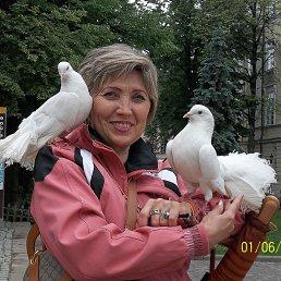 Нина, 62 года, Терновка