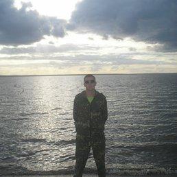 Александр, 28 лет, Переславль-Залесский