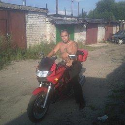 Паша, 35 лет, Покров