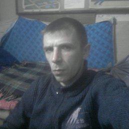 Дмитрий, 41 год, Починок
