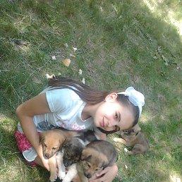 Елизавета, 17 лет, Дружковка