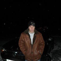 Александр, 29 лет, Купянск