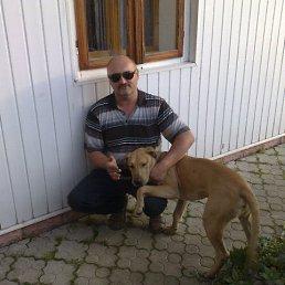Богдан, 49 лет, Дрогобыч