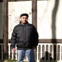 Алексей, 41 год, Володарка