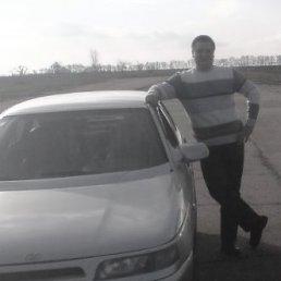 Влад, 29 лет, Тальное