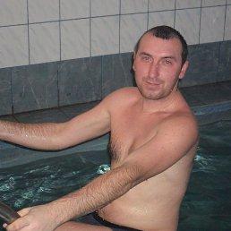 веталь, 29 лет, Костополь