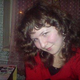 Котик, 28 лет, Пироговский
