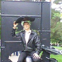 Олег, 52 года, Светлогорск