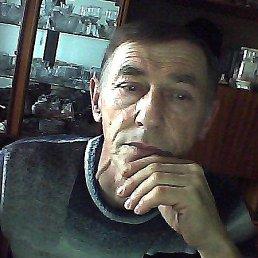 Владимир, 65 лет, Западная Двина